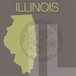 Illinois court reporters may have to make major adjustments to new state regulations.